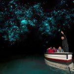 glowworm caves Nieuw Zeeland