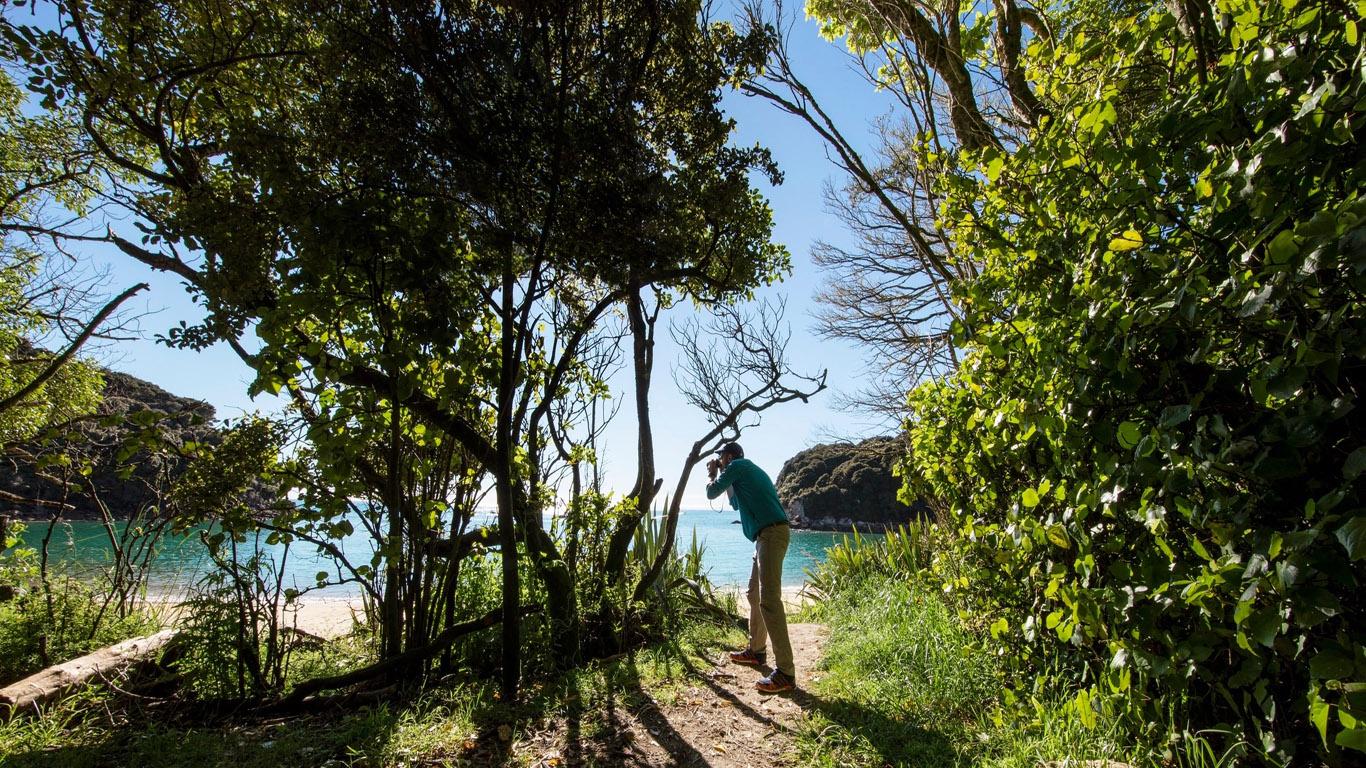 Abel Tasman Nieuw Zeeland wandelen